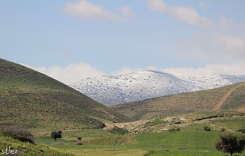 שלג1.jpg